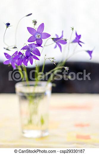 Bouquet de campanulas - csp29330187