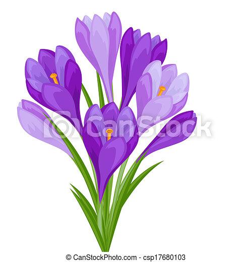 Un ramo de flores en el fondo blanco. - csp17680103