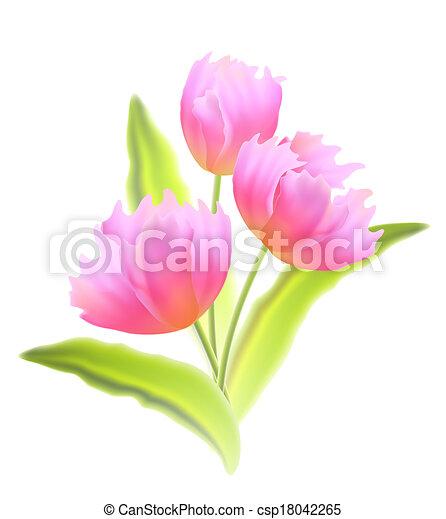 Bouquet de tulipanes aislados. - csp18042265