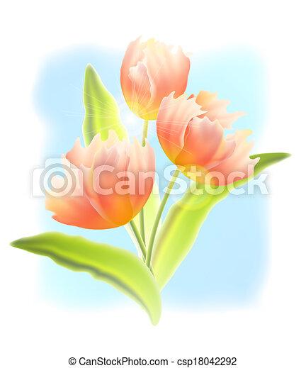 Bouquet de tulipanes - csp18042292