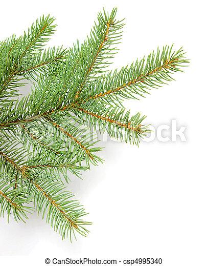 ramos, pinho - csp4995340
