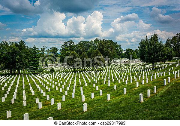 rangées, tombes, arlington, virginia., cimetière, national, arlington - csp29317993