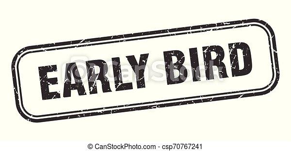 ranní ptáče - csp70767241