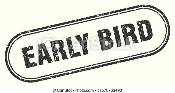 ranní ptáče - csp70763490