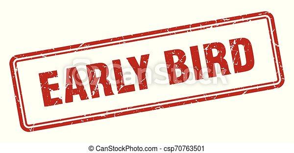 ranní ptáče - csp70763501