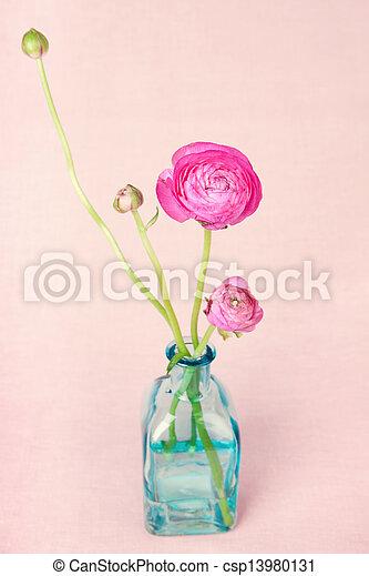 ranunculus, 葡萄收获期, 花, 背景, 瓶 - csp13980131