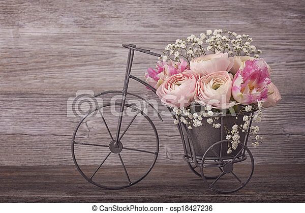 ranunculus, blomster - csp18427236