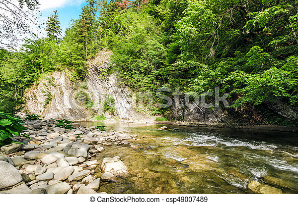 rapid flow of the river in forest - csp49007489