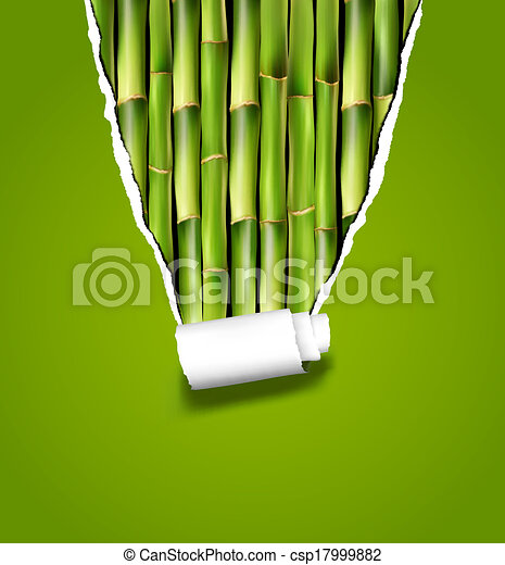 Trasfondo de bambú con papel rasgado. Ilustración de vectores. - csp17999882