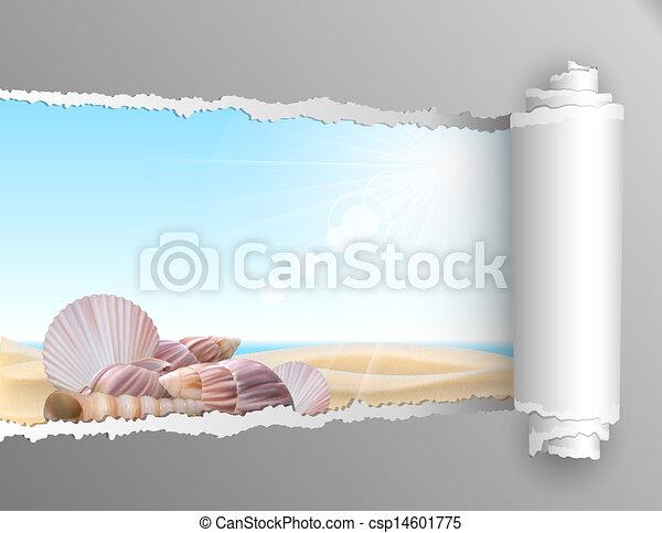 rasgado, verão, papel, experiência. - csp14601775