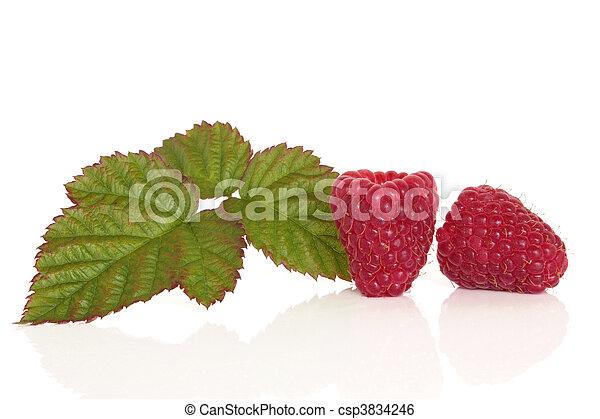 Raspberry Fruit - csp3834246