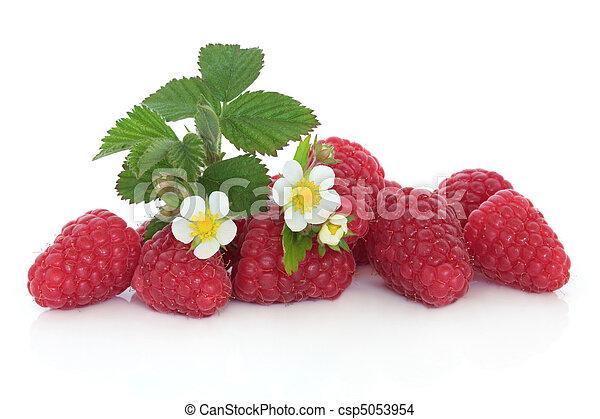 Raspberry Fruit - csp5053954