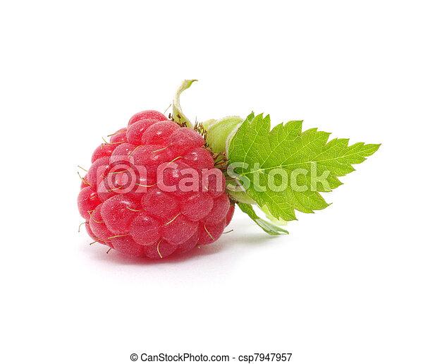 Raspberry - csp7947957