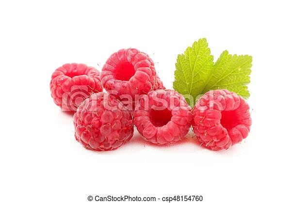 raspberry - csp48154760