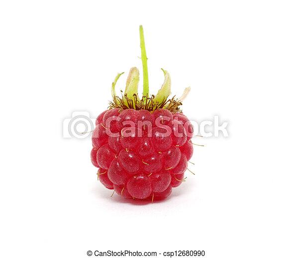 Raspberry - csp12680990