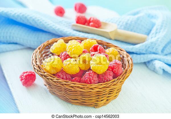 raspberry - csp14562003