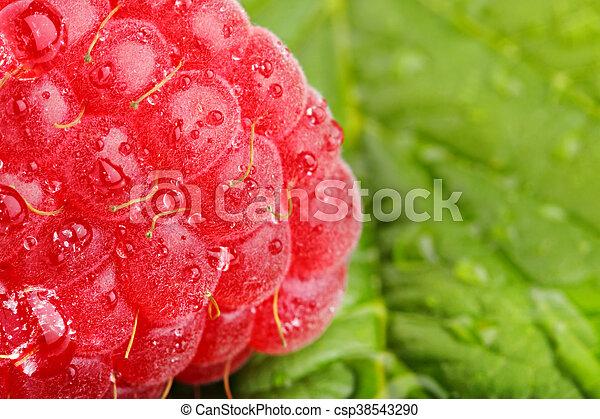 raspberrys 2 - csp38543290