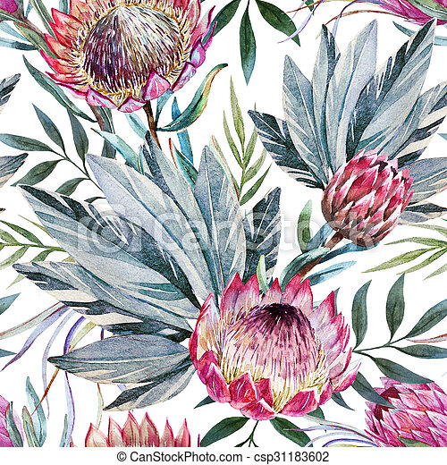 Raster tropical protea pattern - csp31183602