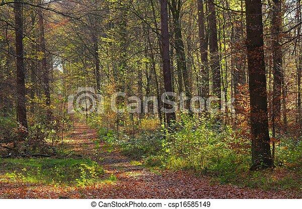 rastro, hiking - csp16585149