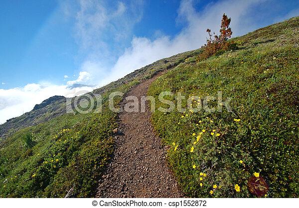 rastro, montanhas - csp1552872