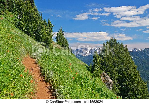 rastro, montanhas - csp1553024