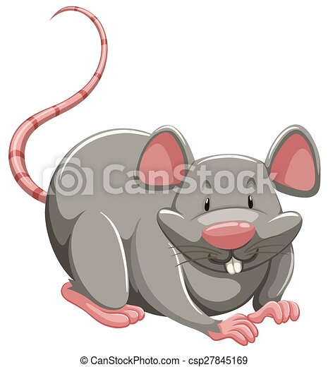 Mouse - csp27845169