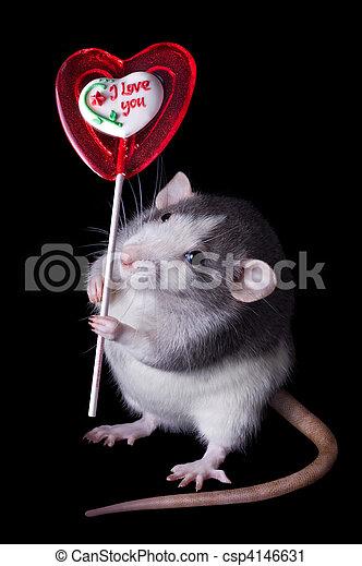 Rata de San Valentín - csp4146631