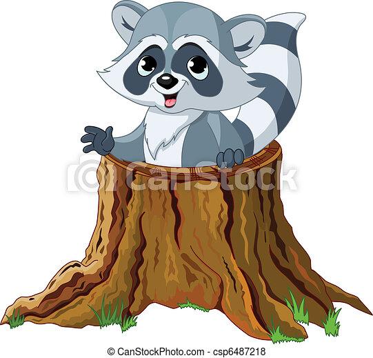 raton laveur, souche, arbre - csp6487218