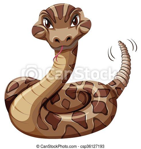 Rattlesnake on white background - csp36127193