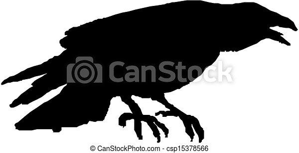 raven vector silhouette  - csp15378566