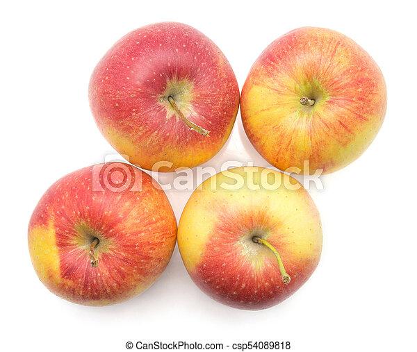 raw evelina apple isolated four apples evelina variety isolated