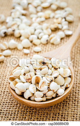 Raw millet rice in wooden spoon. - csp36688439