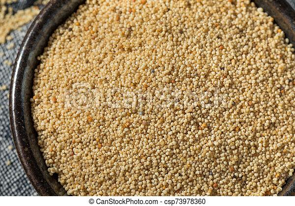Raw Organic White Poppy Seeds - csp73978360