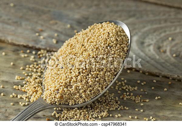 Raw Organic White Poppy Seeds - csp47968341