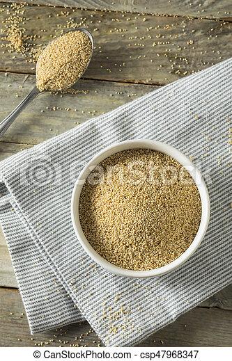 Raw Organic White Poppy Seeds - csp47968347