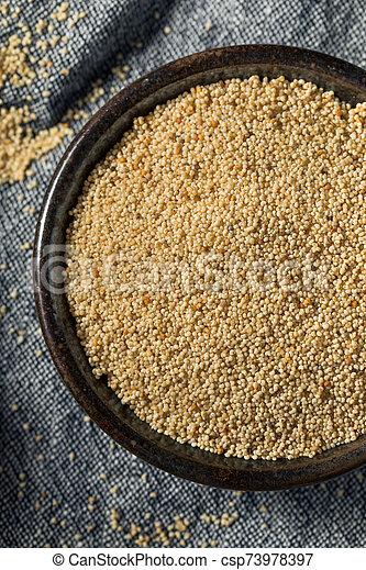 Raw Organic White Poppy Seeds - csp73978397