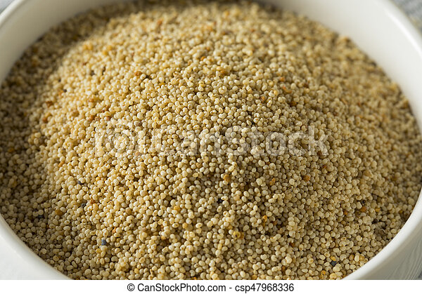 Raw Organic White Poppy Seeds - csp47968336
