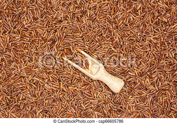 Raw red rice isolated - csp66605786