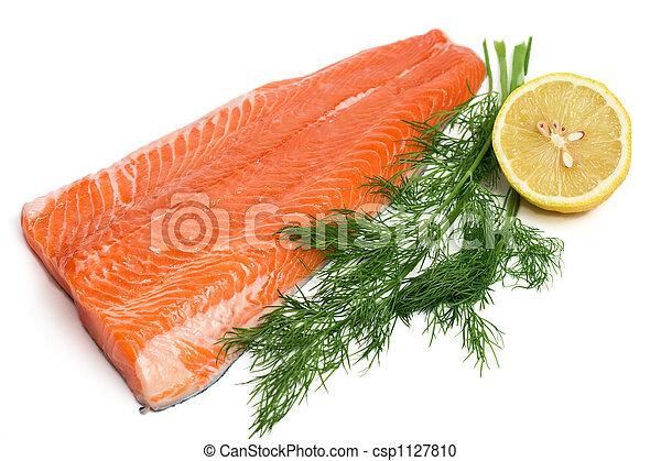 raw salmon - csp1127810