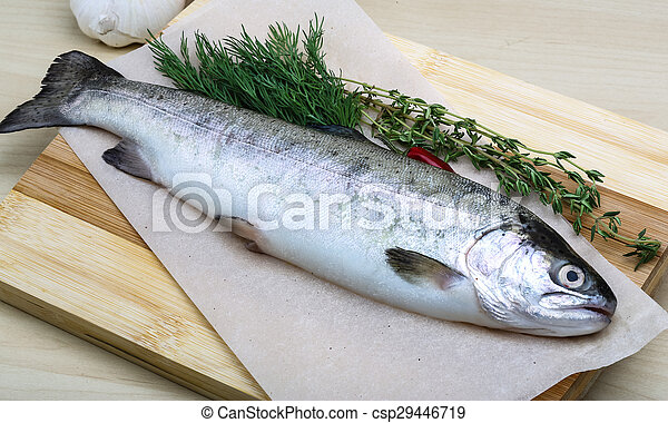 Raw trout - csp29446719