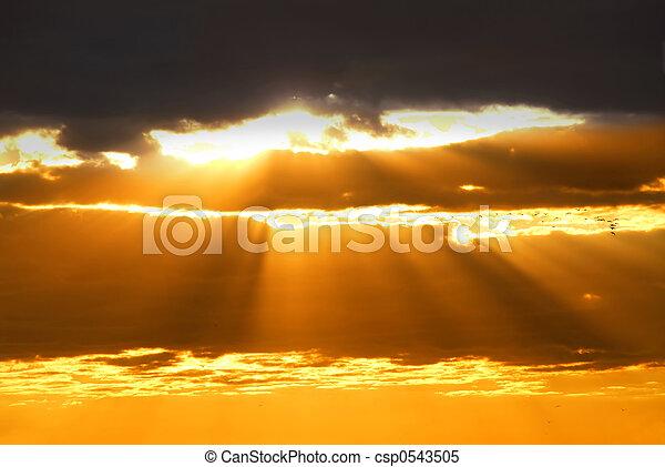 rayons soleil - csp0543505