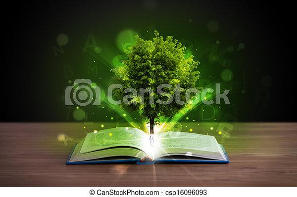 Libro abierto con árboles verdes mágicos y rayos de luz - csp16096093