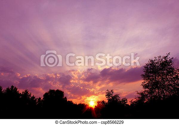 Rays of Sunlight in Illinois - csp8566229