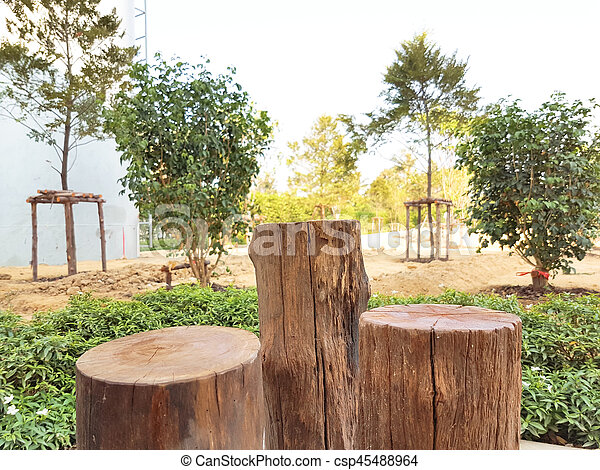 Real Brown Stump Chair Was Decorate In The Garden   Csp45488964
