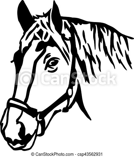 real horse head vector vectors search clip art illustration rh canstockphoto com horse head vector clipart horse head vector black and white