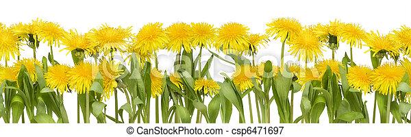 Real spring flowers border real spring border from yellow real spring flowers border csp6471697 mightylinksfo
