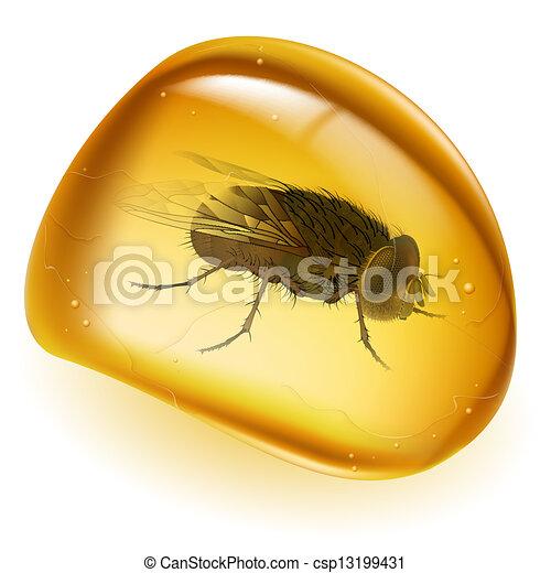 Realistic amber - csp13199431