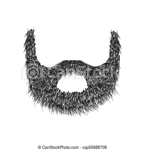 Realistic Beard  isolated on white background vector illustration. - csp55688708