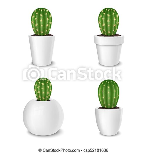 Realistic decorative cactus plant in white flower pot icon set realistic decorative cactus plant in white flower pot icon set closeup isolated on white background mightylinksfo