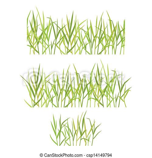 Realistic green grass - csp14149794